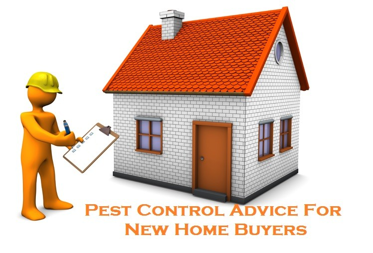Pest Control Advice For New Home Buyers