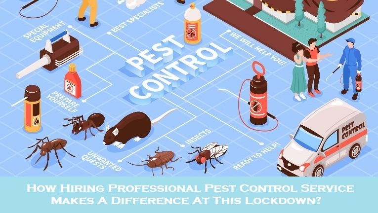 How Hiring Professional Pest Control Service Makes A Difference At This Lockdown?