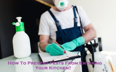 How To Prevent Pests From Entering Your Kitchen?