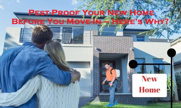 Pest-Proof Your New Home Before You Move-In – Here's Why?