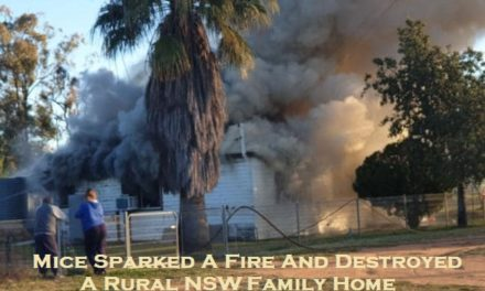 Mice Sparked A Fire And Destroyed A Rural NSW Family Home