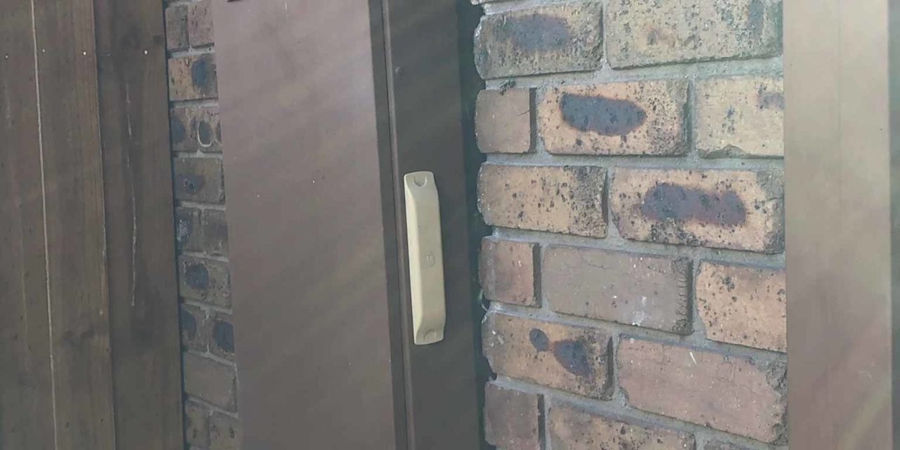Wasp Behind Electrical Metre Box Scares Homeowner- Wasp Nest Removal In Bayswater, Melbourne