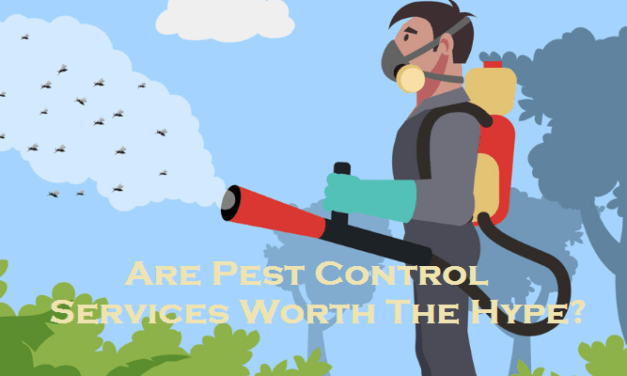 Are Pest Control Services Worth The Hype?