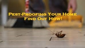 Pest-Proofing Your Home – Find Out How!