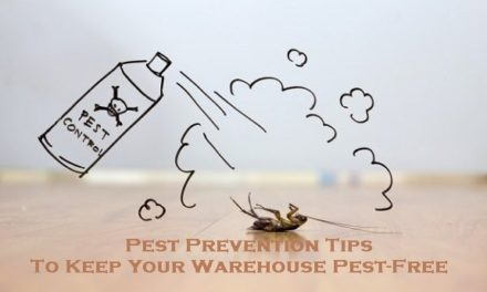 Pest Prevention Tips To Keep Your Warehouse Pest-Free